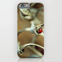 iPhone & iPod Case featuring Ladybug by Fairlady
