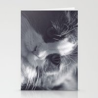 Cat Love Stationery Cards