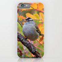 Bird in Autumn Foliage iPhone 6 Slim Case