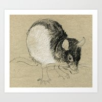 Rat 2 Art Print