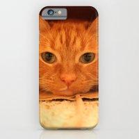 Cat In A Bag iPhone 6 Slim Case