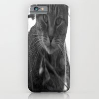 iPhone & iPod Case featuring Winter Stare by HeartWrist Photography