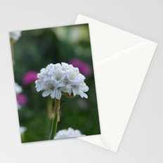 It's Reality Stationery Cards
