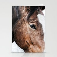 Equine Trance Stationery Cards