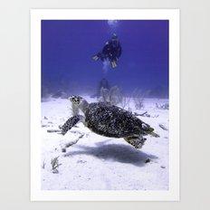 Divers Watching Hawksbill Turtle Art Print