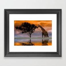 Giraffe at Sunset Framed Art Print
