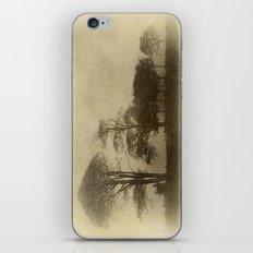 Tallest Tree First iPhone & iPod Skin