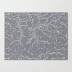 Ferning - Gray Canvas Print