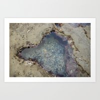 the heart shaped tide pool  Art Print