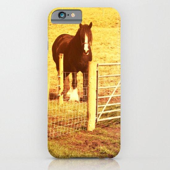 Vintage Horses iPhone & iPod Case
