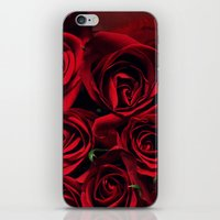 Red Roses iPhone & iPod Skin