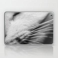 Listen up Meow Laptop & iPad Skin