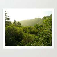 California Coast Trees I Art Print