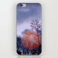 Come in from the Cold iPhone & iPod Skin