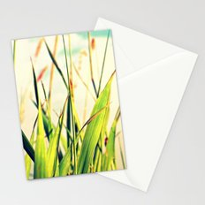 Carefreeness Stationery Cards