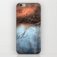 evening hush.  iPhone & iPod Skin