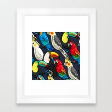 Macaw and Toucan Tropical Pattern Framed Art Print