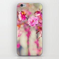 Peach Tree iPhone & iPod Skin