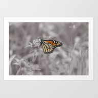 Art Print featuring Selectively Regal by Kealaphotography