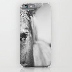 The Spirited Horse iPhone 6 Slim Case