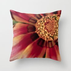 Centralized Throw Pillow
