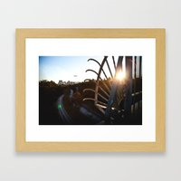 San Diego - Balboa Bridge  Framed Art Print