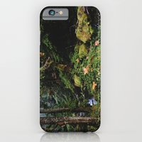 Late Fall Forest iPhone 6 Slim Case