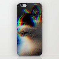 Kitten in colour iPhone & iPod Skin