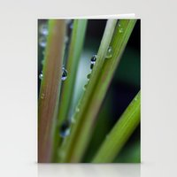 Grass Drops Stationery Cards