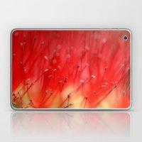 Callistemon's secret 2517 Laptop & iPad Skin