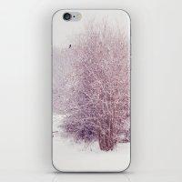 winter's snow iPhone & iPod Skin