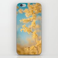 I Dream In Yellow iPhone & iPod Skin