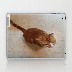 MORRIS ON THE WALL Laptop & iPad Skin