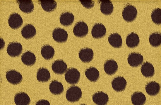 Animal Patterns - Cheetah Art Print