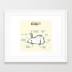 Anatomy of a Rabbit Framed Art Print