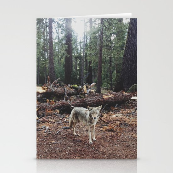 Injured Coyote Stationery Card