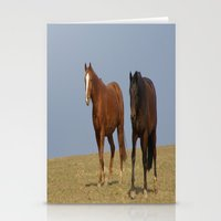 horses Stationery Cards featuring horses by Laake-Photos