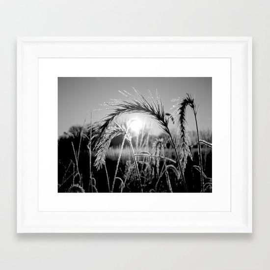 Wheat Sunrise B&W Framed Art Print