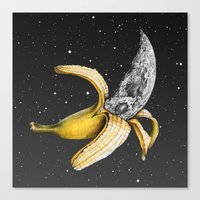 A Planetary Plantain Canvas Print