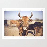 On The Farm  Art Print