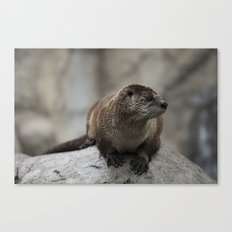Doin' What He Otter Canvas Print