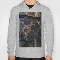 The Grand Canyon and Trees. Hoody