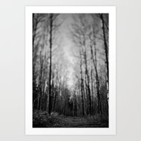 traveled trail. Art Print