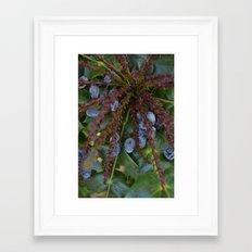 berry expolosion Framed Art Print