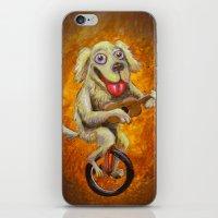 Tidus The Dog iPhone & iPod Skin