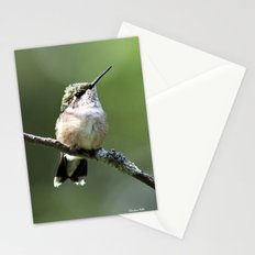 Hummingbird Perch Stationery Cards