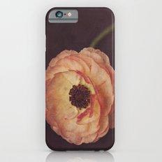 Winter Ranunculus  Slim Case iPhone 6s