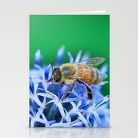 Bee & Flower Stationery Cards