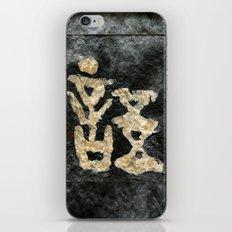 Hieroglyph iPhone & iPod Skin