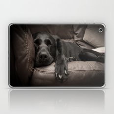 Black Labrador Asleep Laptop & iPad Skin